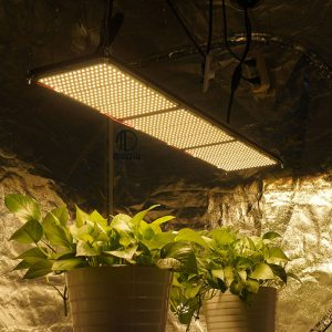 320W QB288 grow light
