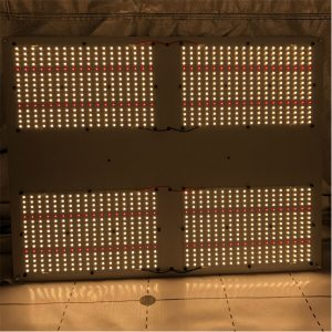480W hlg 550 grow light led